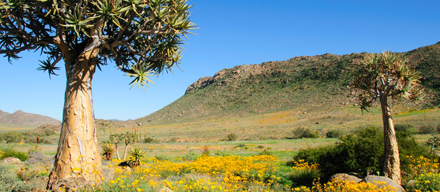 Marydale, in the Northern Cape province of South Africa